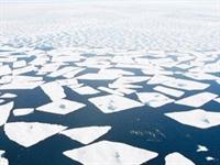 Buzullarda Hareketlilik Sürüyor