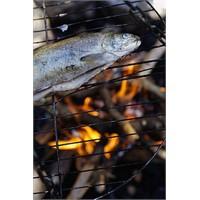Ustasından Balık Pişirme Tavsiyeleri