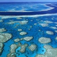 Avustralya - Büyük Mercan Resifi