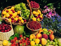 Hastalıklara Bitkisel Çözümler