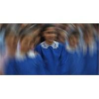 Kobay Evreni: Eğitim Sistemi