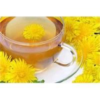 Karahindiba Çayı Kanser Hastalığını Yendi