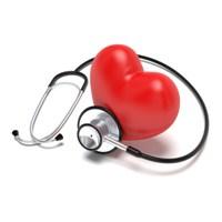 Kalbin Vücudumuzdaki Vazifeleri