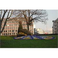 Planten Un Blomen Parkı, Hamburg #direngezi