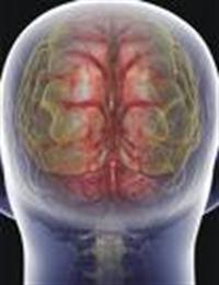 Beyin Damarlarını Açmak İçin