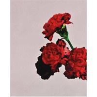 Grammy Ödüllü Sanatçıdan Yeni Albüm!