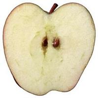 Yarım Elma Bekleyince Neden Kararır ?