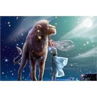 2012'de Aslan Burcu'nun Aşk Hayatı Nasıl Olacak?