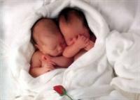 Doğum Kontrol Haplarının Faydaları Ve Zararları