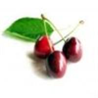 Besinler Ve Kalori Değerleri