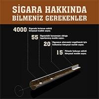 Sigara Hakkında Bilmeniz Gerekenler [İnfografik]