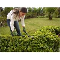 Bahçe Bakımı İle Yeşillenen Bahçeler