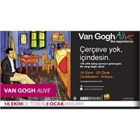 Cermodern'den Van Gogh Alive Geçti..