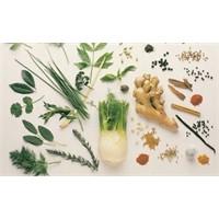 Tıbbi Bitkileri Alırken Nelere Dikkat Etmeliyiz?