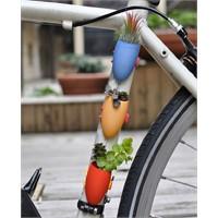 Bisikletinizi Yeşillendirin