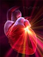 Kalp Sağlığı Basit Yöntemlerle Nasıl Korunur ?