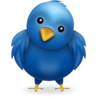 Twitter Takipçi Kutusu
