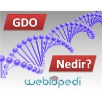 Gdo (Genetiği Değiştirilmiş Organizma) Nedir?
