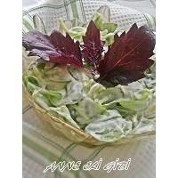 Yoğurtlu Sarımsaklı Semizotu Salatası