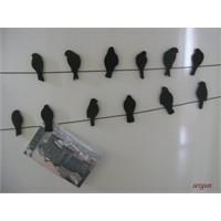 Kuş Magnetler