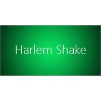 İstediğiniz Siteye Harlem Shake Yaptırın