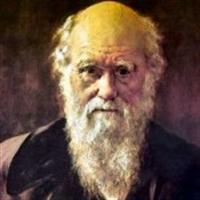 Darwin'in İlginç Özellikleri