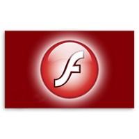 Flash Nedir?