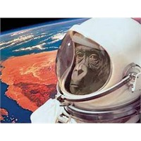 İran'ın Uzaya Gönderdiği Maymun Kayıp!