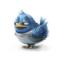 Twitter Kuşununun Evrimi