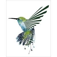Google Hummingbird Algoritması Ve Seo Etkileri