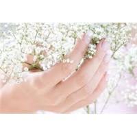 Sağlıklı Ve Bakımlı Eller İçin