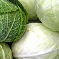 Sağlıklı Kılo Verdıren Sebze: Lahana!