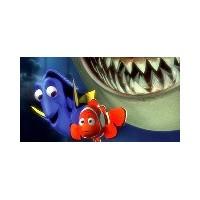 Kayıp Balık Nemo'nun Dostları Tehlikede!