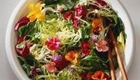 Toksin Atıcı Kozmik Salata Nasıl Yapılır