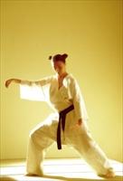 Tai Chi Kısa Form Hareketleri