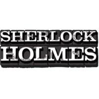 Sherlock Holmes Dizi Kahramanı Olursa