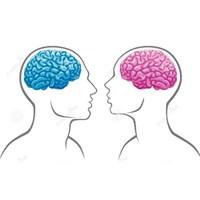 Beynimizin De Cinsiyeti Var