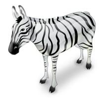 Zebra Formatında Çalışma Sayfasını Biçimlendirme