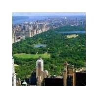 Şimdi Seni Daha Çok Seviyorum Canım New York' Um…