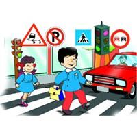 Trafik Kurallarına Neden Uymalıyız