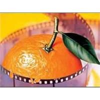 48. Antalya Altın Portakalları Sahiplerini Buldu
