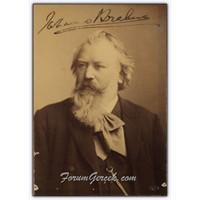 Klasik Müziğin Ustalarından | Johannes Brahms