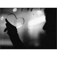 Sevmek Nasıl Bir Şey