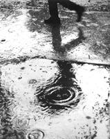 Yağmurdan Sonra -şiir-