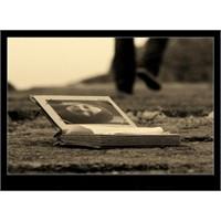 Bir Fotoğrafa Şiiri..