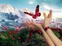 Hayatınızı,kendi Ellerinizle Şekillendirirsiniz