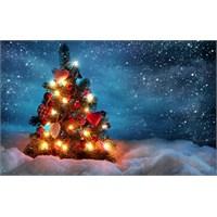 Christmas Şarkıları !