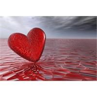 Sevginin Önemlisi