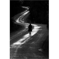 Yolları Katıyorum Önüme … – Yasemin Güldü