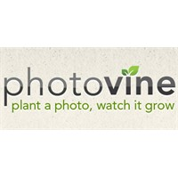 Google'den Yeni Bir Sosyal Ağ: Photovine